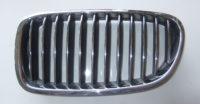 BMW 5er F10 F11 Ziergitter Niere links